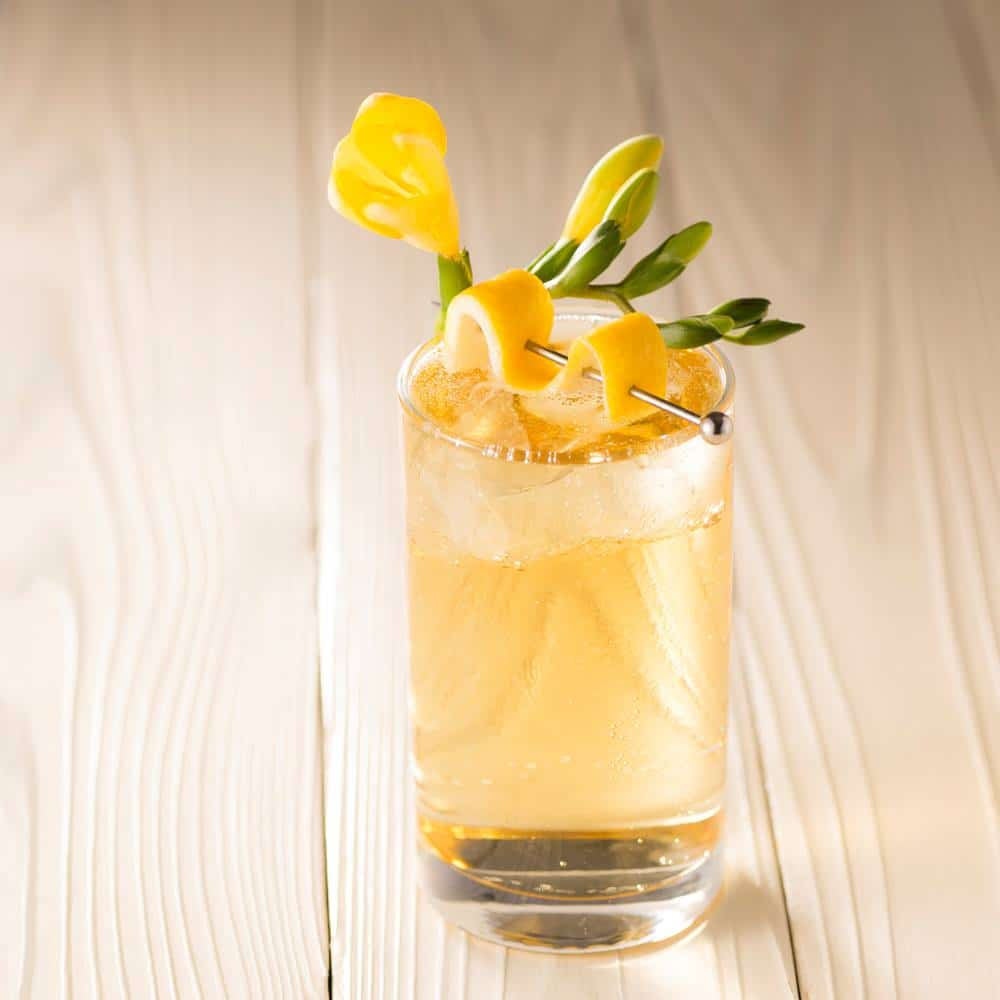 Irish Whiskey Highball Cocktail